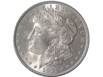 Morgan Dollar Expanded Shell - Heads